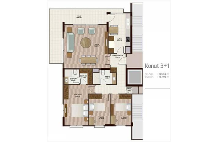 Apartment plan 3+1 F